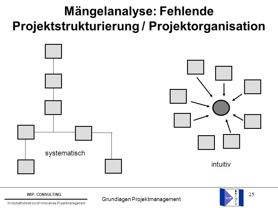 Mängelanalyse: Fehlende Projektstrukturierung / Projektorganisation