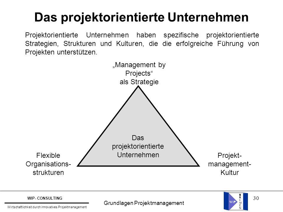 Das projektorientierte Unternehmen
