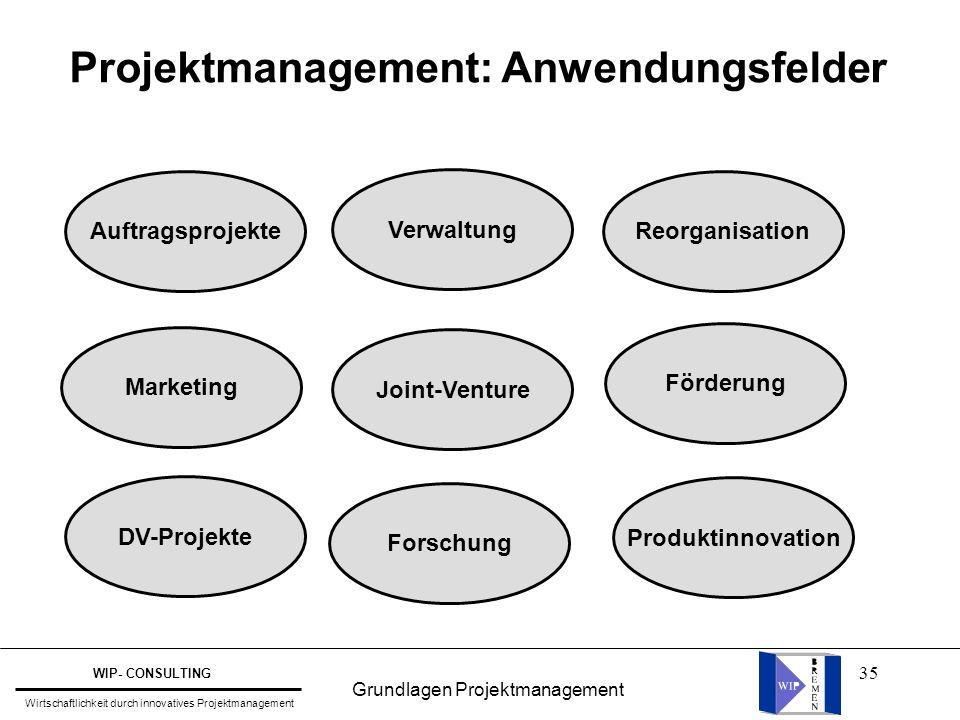 Projektmanagement: Anwendungsfelder