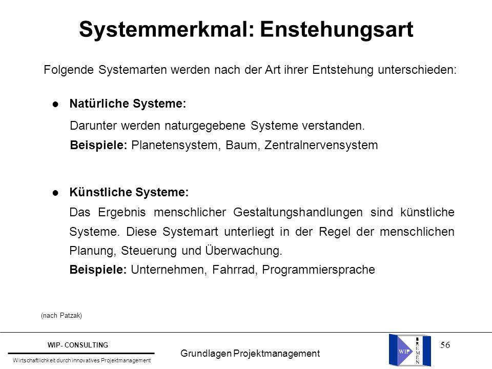 Systemmerkmal: Enstehungsart