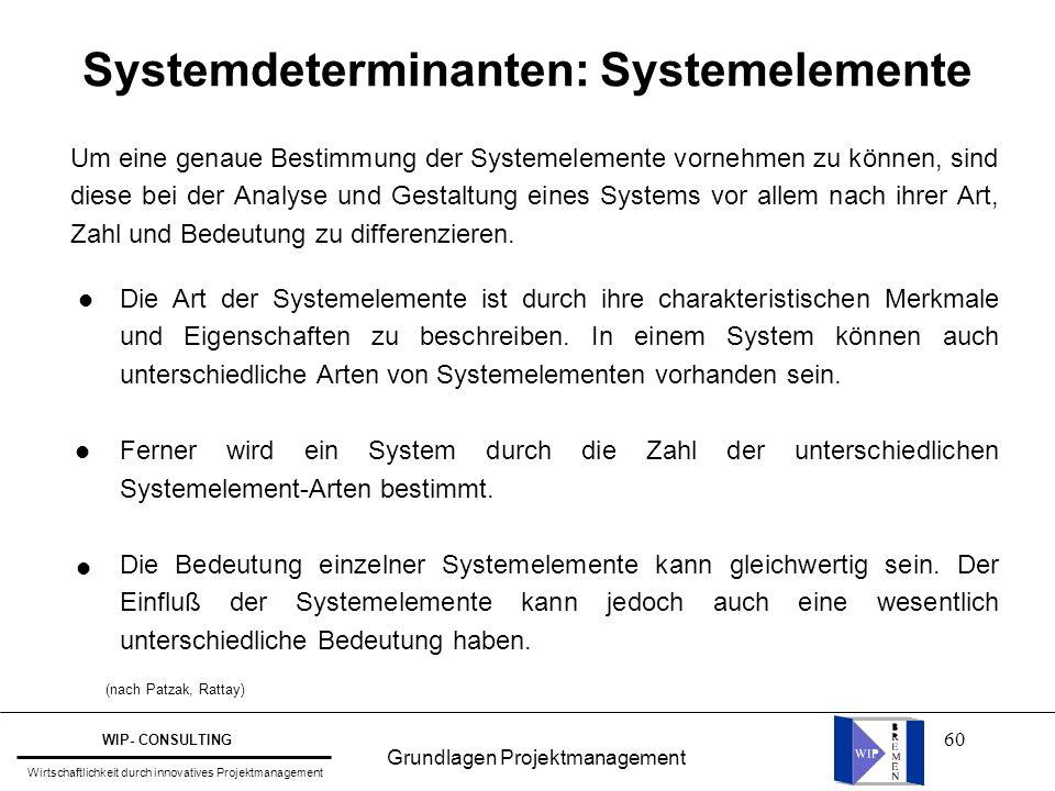 Systemdeterminanten: Systemelemente
