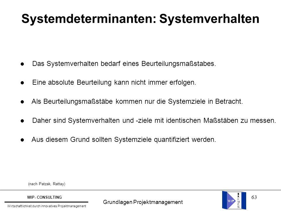 Systemdeterminanten: Systemverhalten