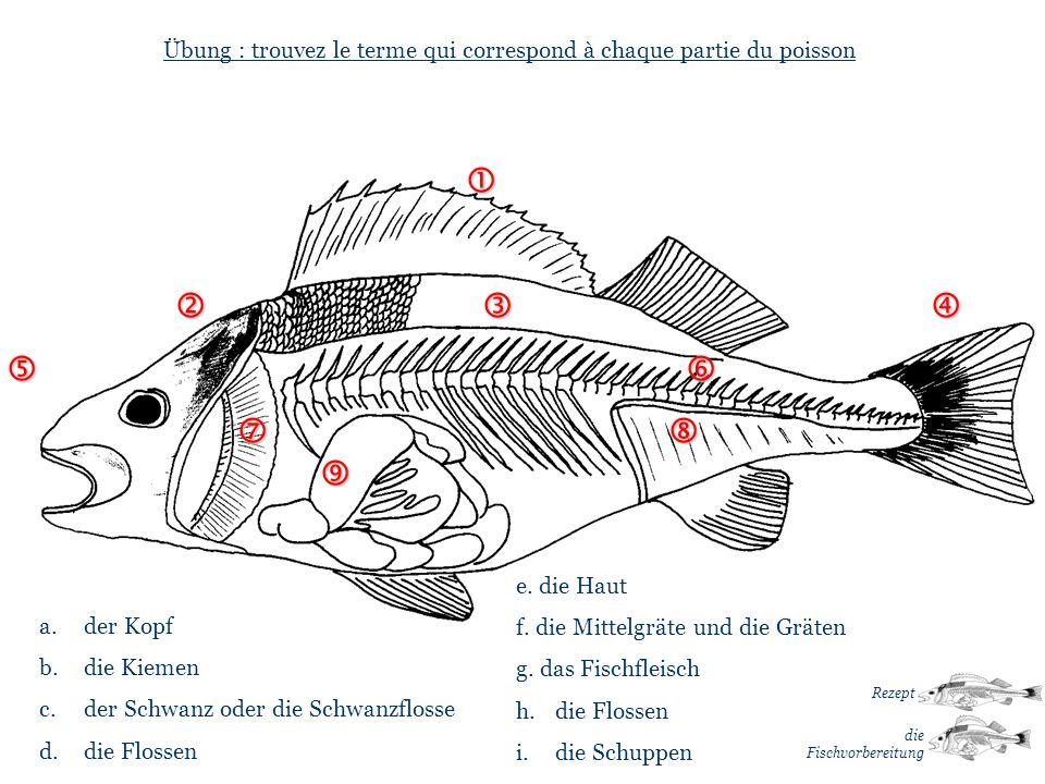 Übung : trouvez le terme qui correspond à chaque partie du poisson