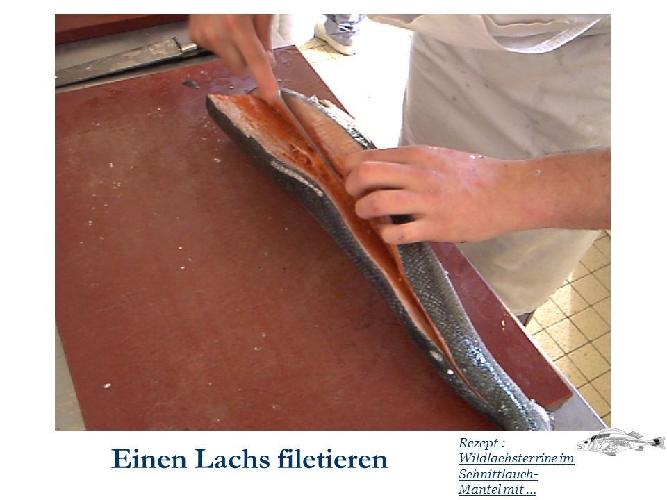 Einen Lachs filetieren