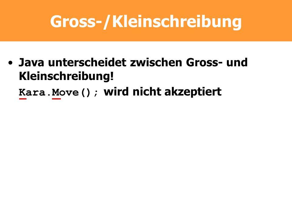 Gross-/Kleinschreibung