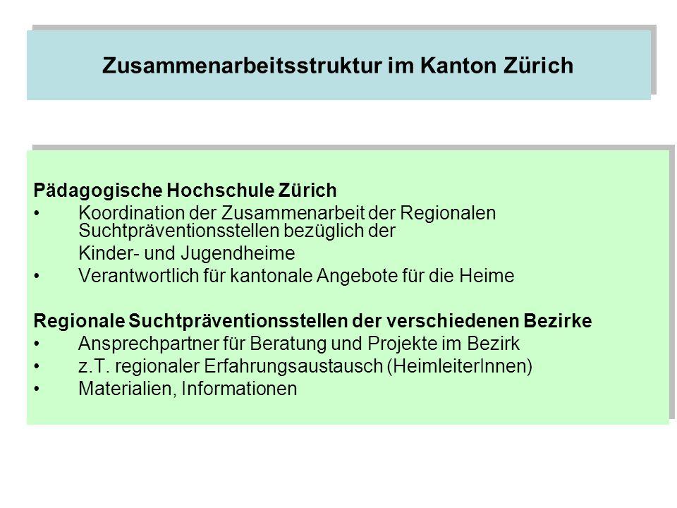 Zusammenarbeitsstruktur im Kanton Zürich