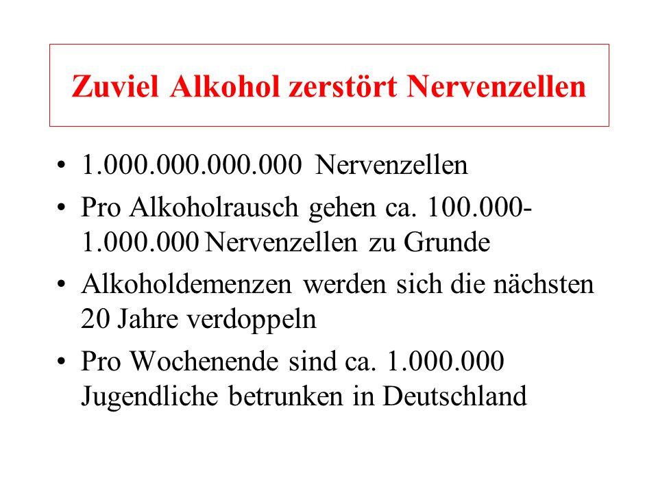 Zuviel Alkohol zerstört Nervenzellen
