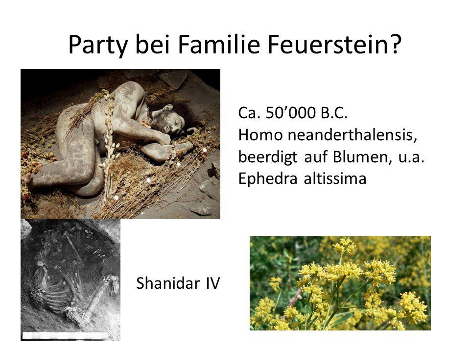 Party bei Familie Feuerstein