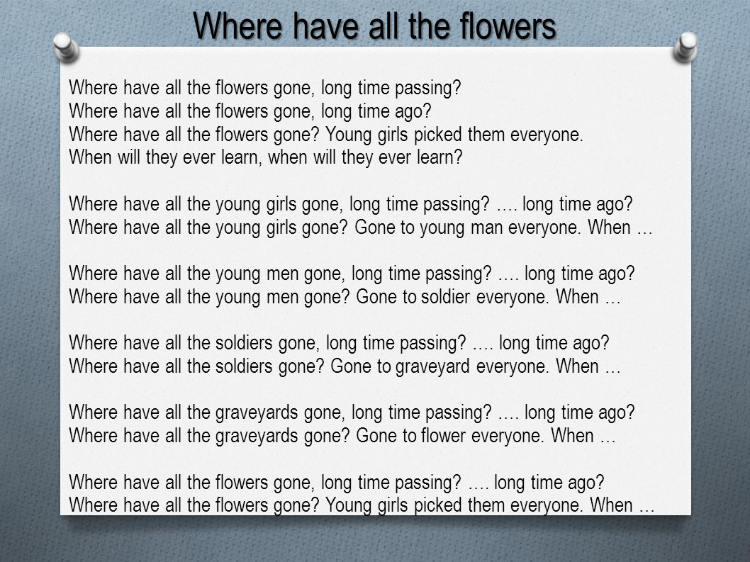 Where have all the flowers