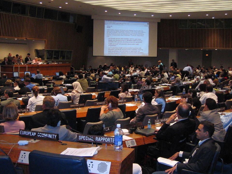 Bild: UN Ad Hoc Komitee, welches die UNO-BRK in New York erarbeitet hat.