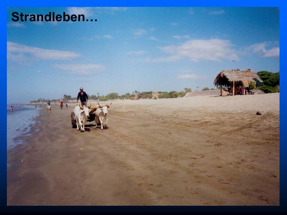 Strandleben… 18.30 Uhr Apero Bären Preisverteilung Kegeln