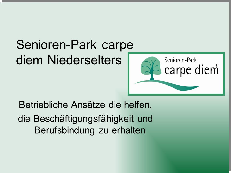 Senioren-Park carpe diem Niederselters