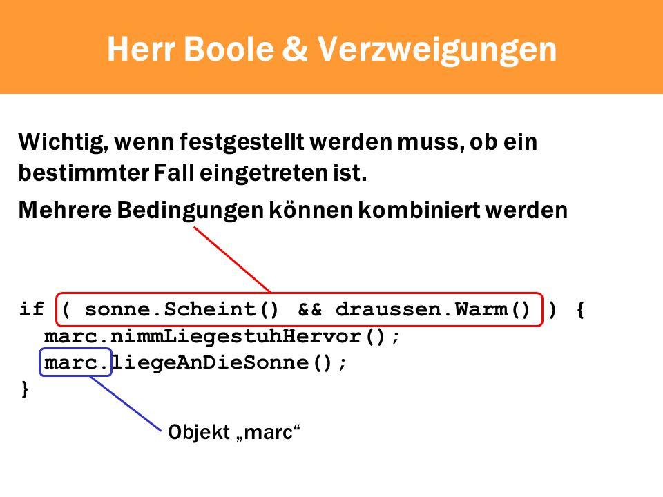 Herr Boole & Verzweigungen