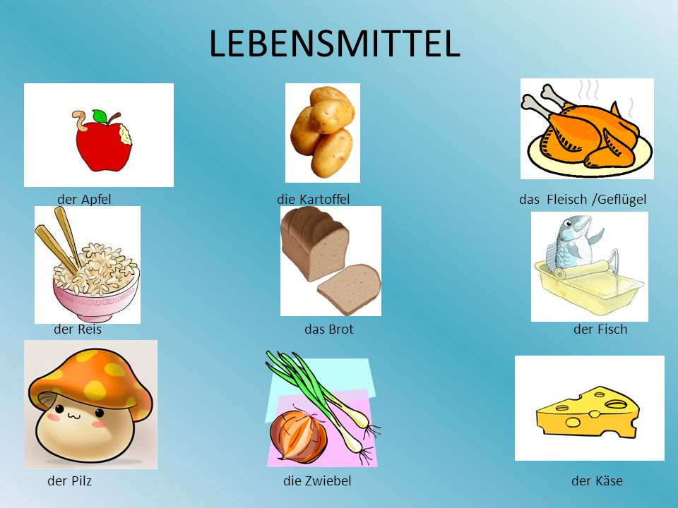 LEBENSMITTEL der Apfel die Kartoffel das Fleisch /Geflügel