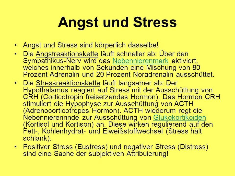 Angst und Stress Angst und Stress sind körperlich dasselbe!
