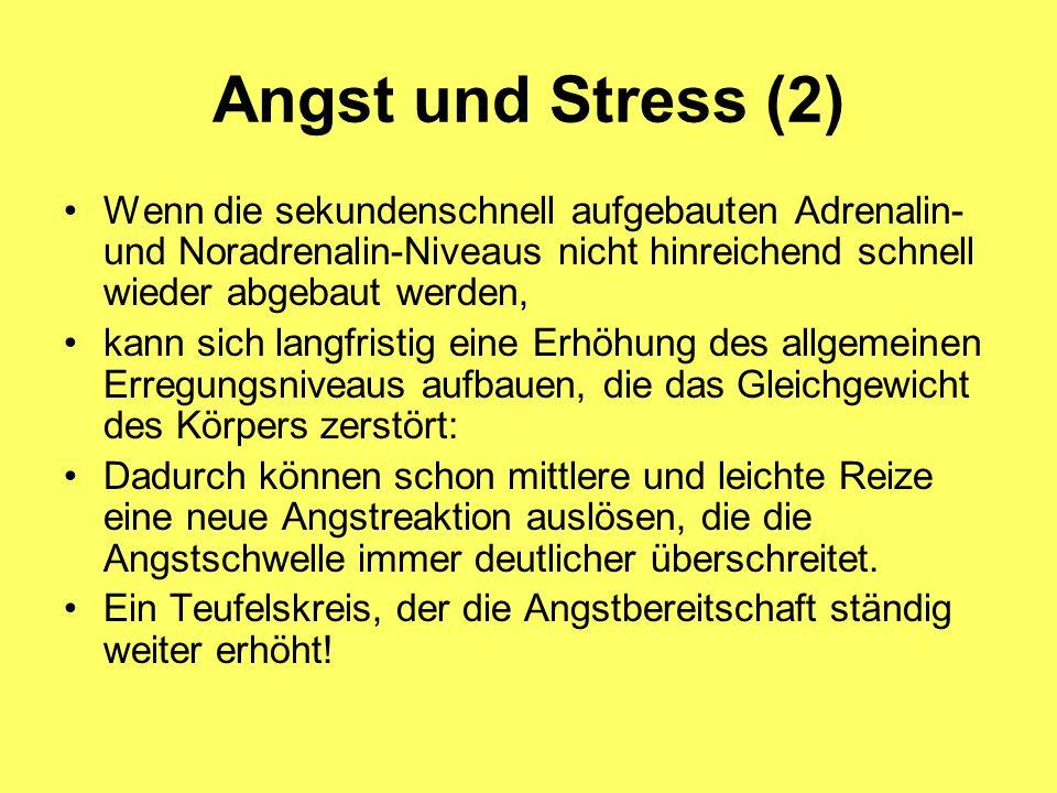 Angst und Stress (2) Wenn die sekundenschnell aufgebauten Adrenalin- und Noradrenalin-Niveaus nicht hinreichend schnell wieder abgebaut werden,