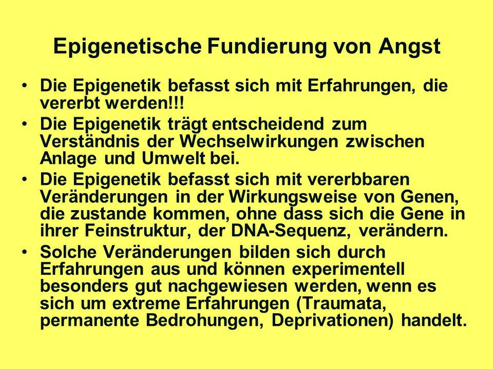 Epigenetische Fundierung von Angst
