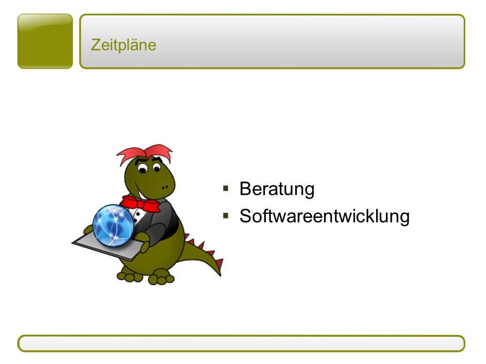 Zeitpläne Beratung Softwareentwicklung