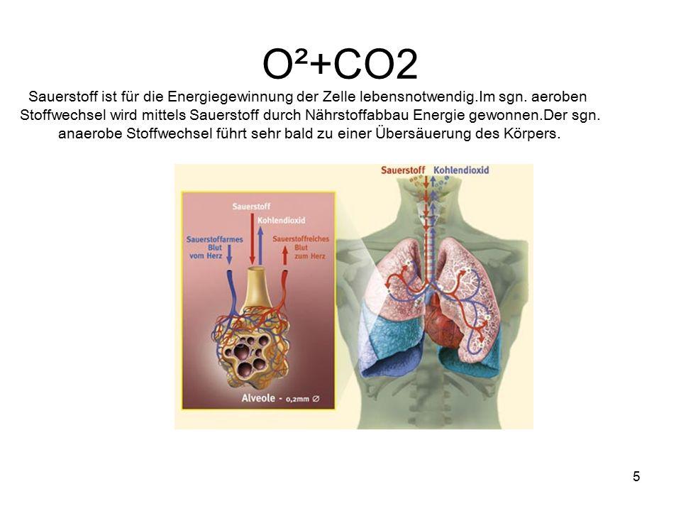 O²+CO2 Sauerstoff ist für die Energiegewinnung der Zelle lebensnotwendig.Im sgn. aeroben.