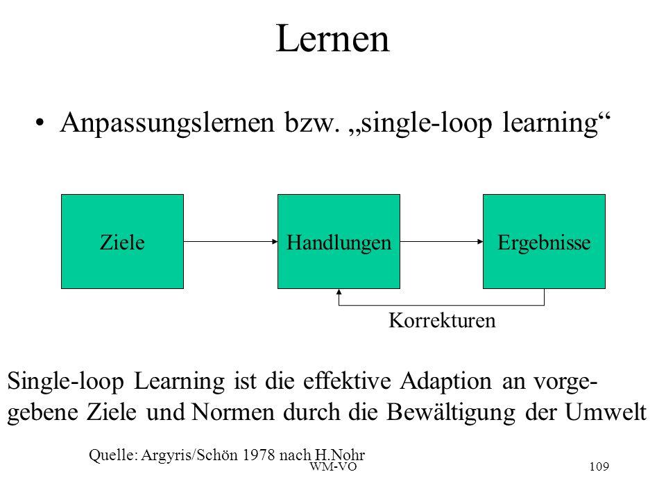 "Lernen Anpassungslernen bzw. ""single-loop learning"