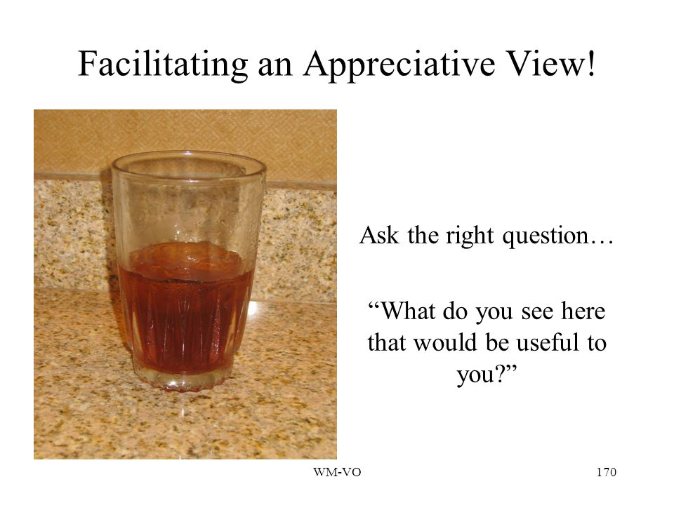 Facilitating an Appreciative View!