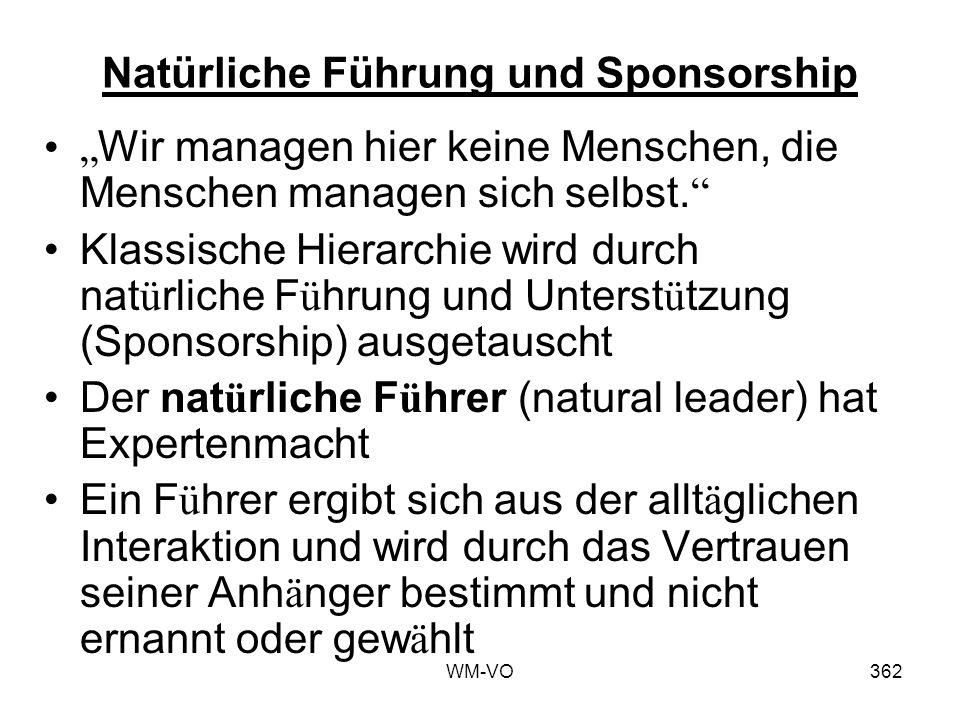 Natürliche Führung und Sponsorship