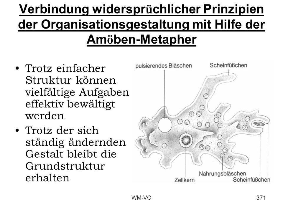 Verbindung widersprüchlicher Prinzipien der Organisationsgestaltung mit Hilfe der Amöben-Metapher