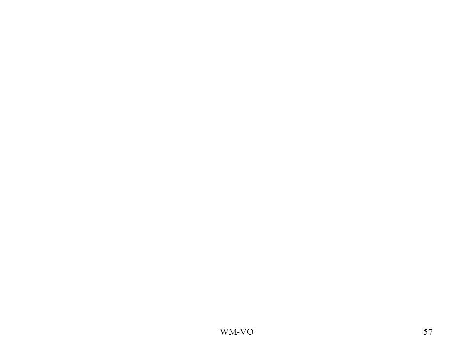 WM-VO