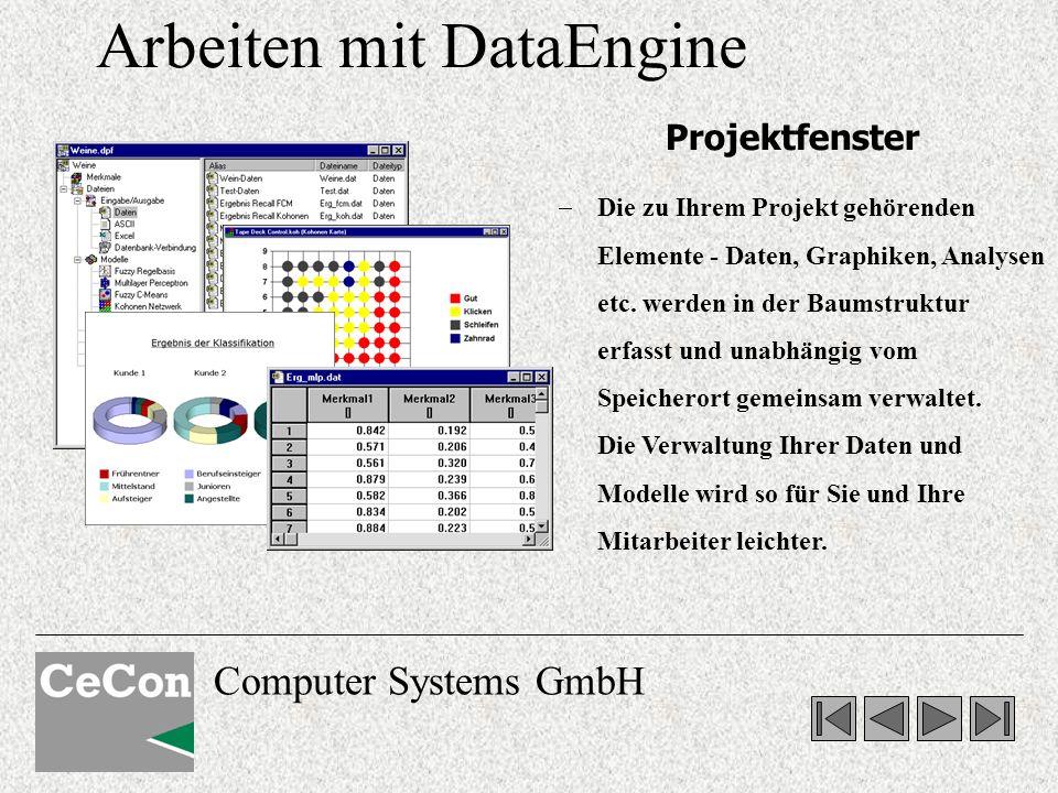 Arbeiten mit DataEngine