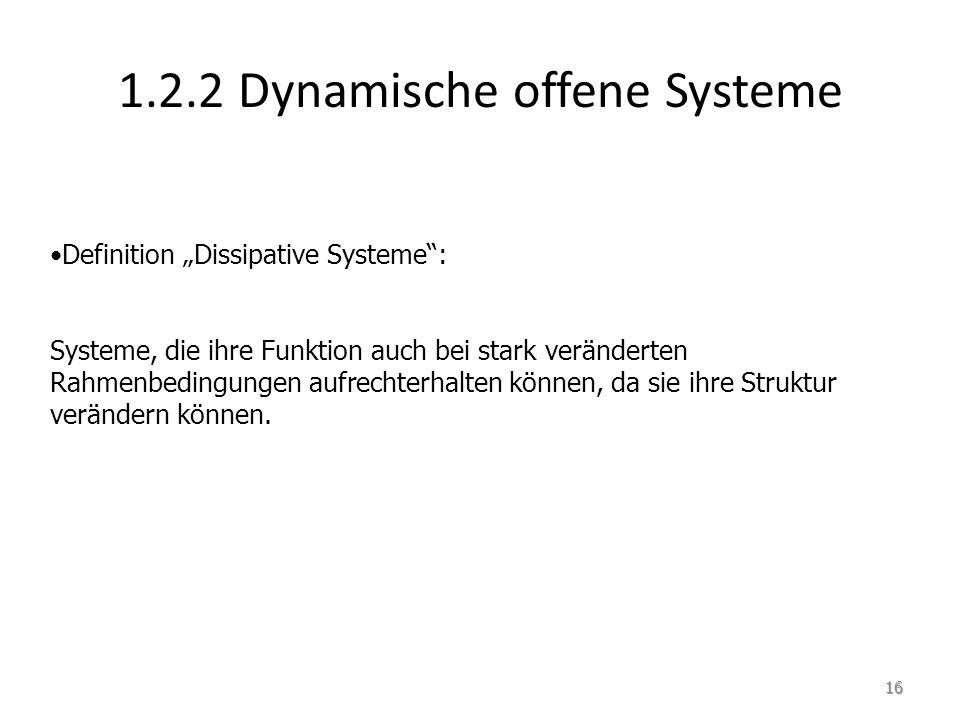 1.2.2 Dynamische offene Systeme