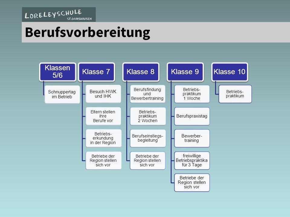 Berufsvorbereitung Klassen 5/6 Klasse 7 Klasse 8 Klasse 9 Klasse 10