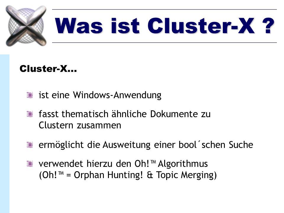 Was ist Cluster-X Cluster-X... ist eine Windows-Anwendung