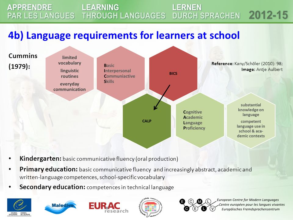 4b) Language requirements for learners at school
