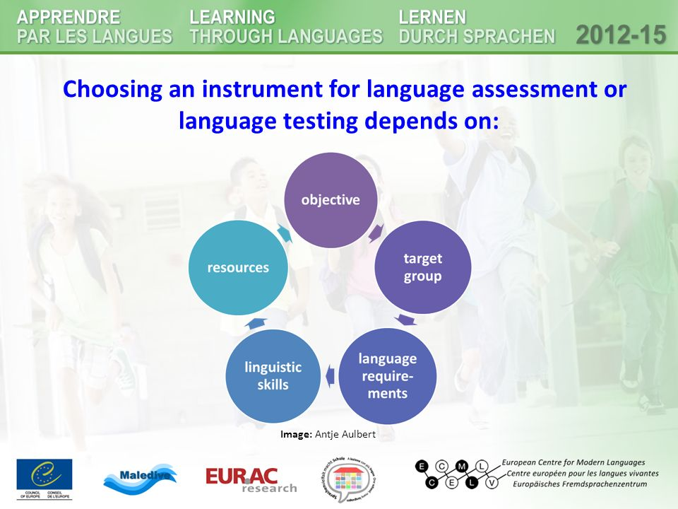 Choosing an instrument for language assessment or language testing depends on: