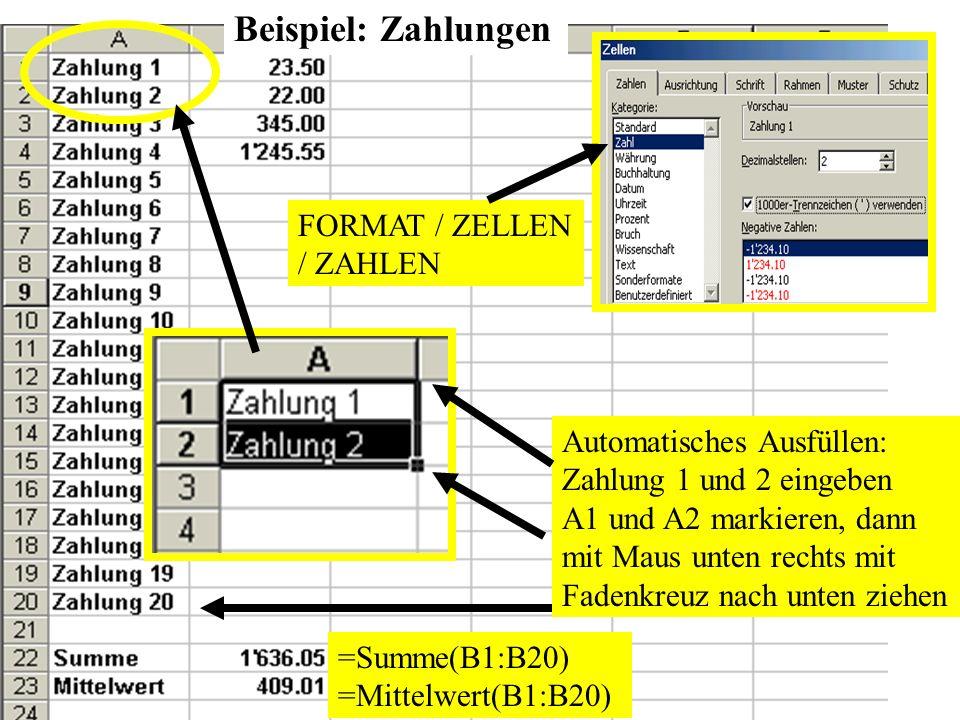 Beispiel: Zahlungen FORMAT / ZELLEN / ZAHLEN