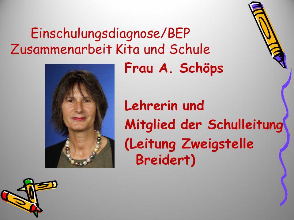 Einschulungsdiagnose/BEP Zusammenarbeit Kita und Schule