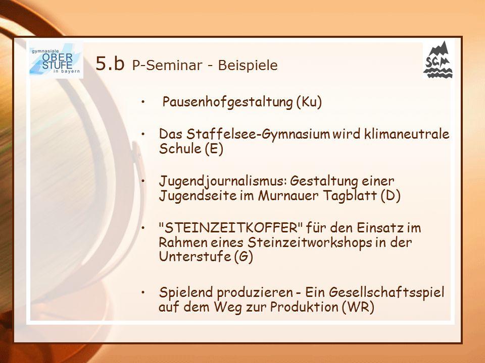 5.b P-Seminar - Beispiele