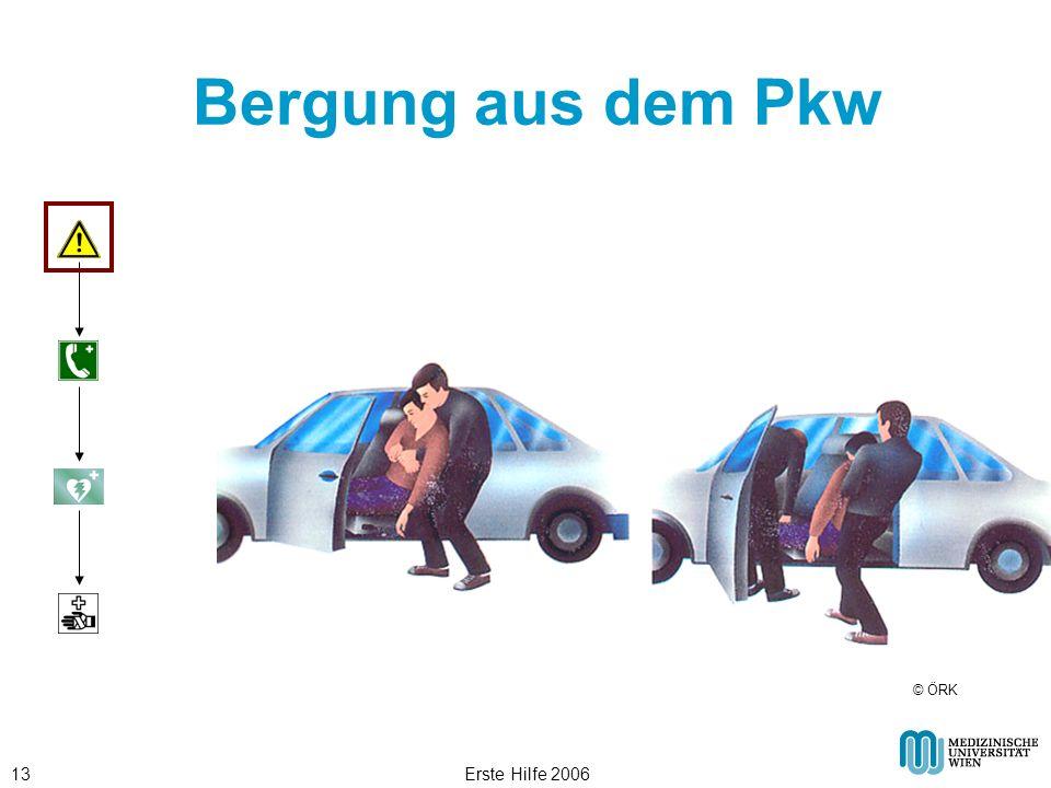 Bergung aus dem Pkw © ÖRK Erste Hilfe 2006