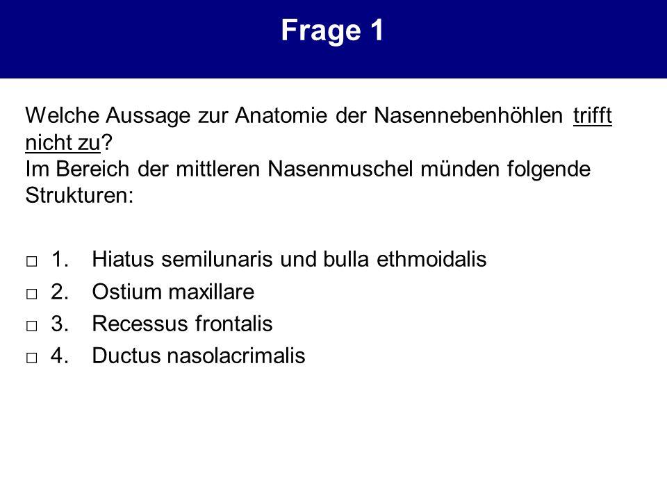 Ausgezeichnet Mittlere Muschel Anatomie Bilder - Menschliche ...
