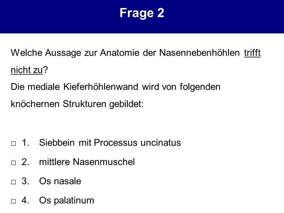 Nett Nasenmuschel Anatomie Bilder - Menschliche Anatomie Bilder ...