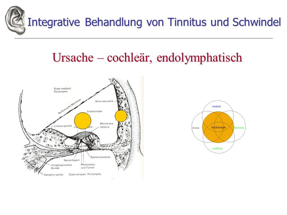 Integrative Behandlung von Tinnitus und Schwindel