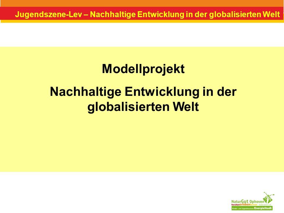 Nachhaltige Entwicklung in der globalisierten Welt