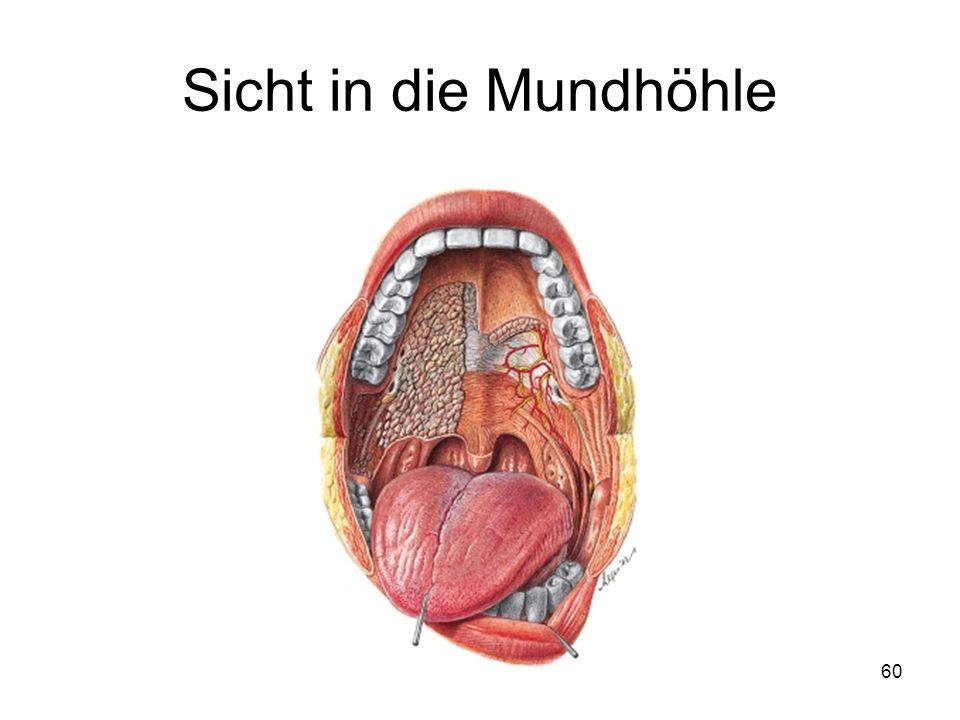 Großzügig Die Mundhöhle Galerie - Menschliche Anatomie Bilder ...