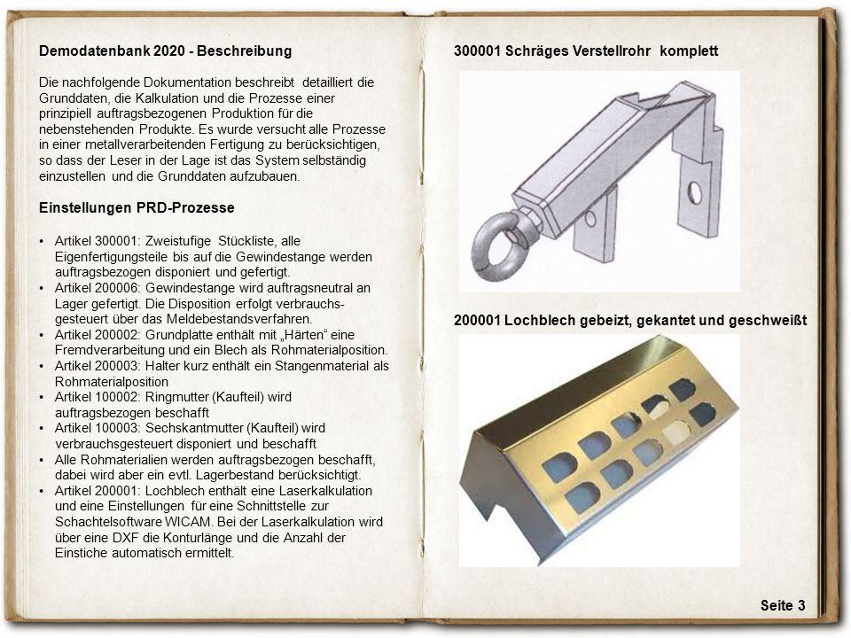 Demodatenbank 2020 - Beschreibung