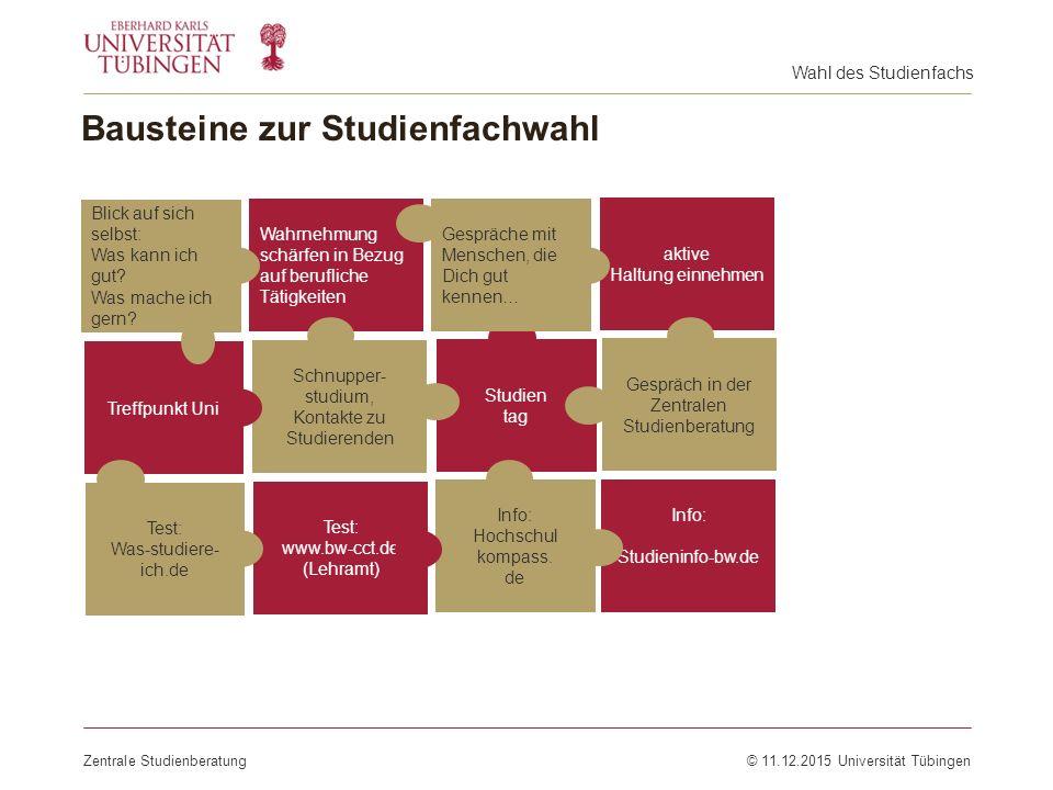 Bausteine zur Studienfachwahl