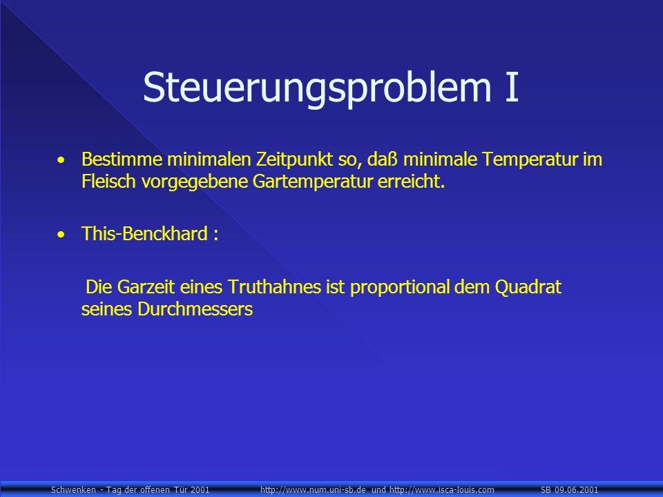Steuerungsproblem I Bestimme minimalen Zeitpunkt so, daß minimale Temperatur im Fleisch vorgegebene Gartemperatur erreicht.