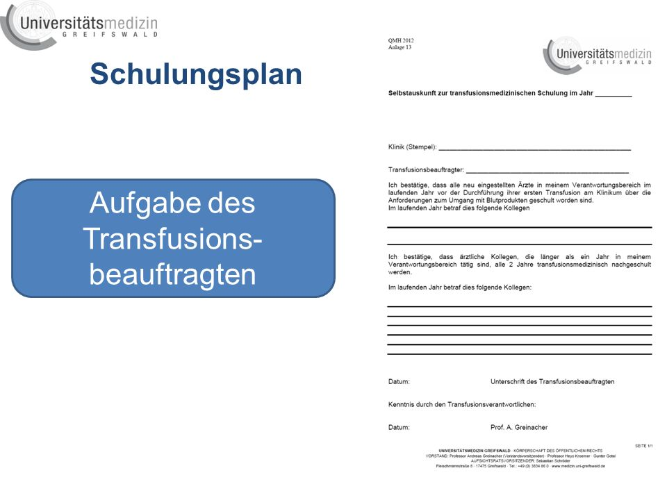 Aufgabe des Transfusions-beauftragten
