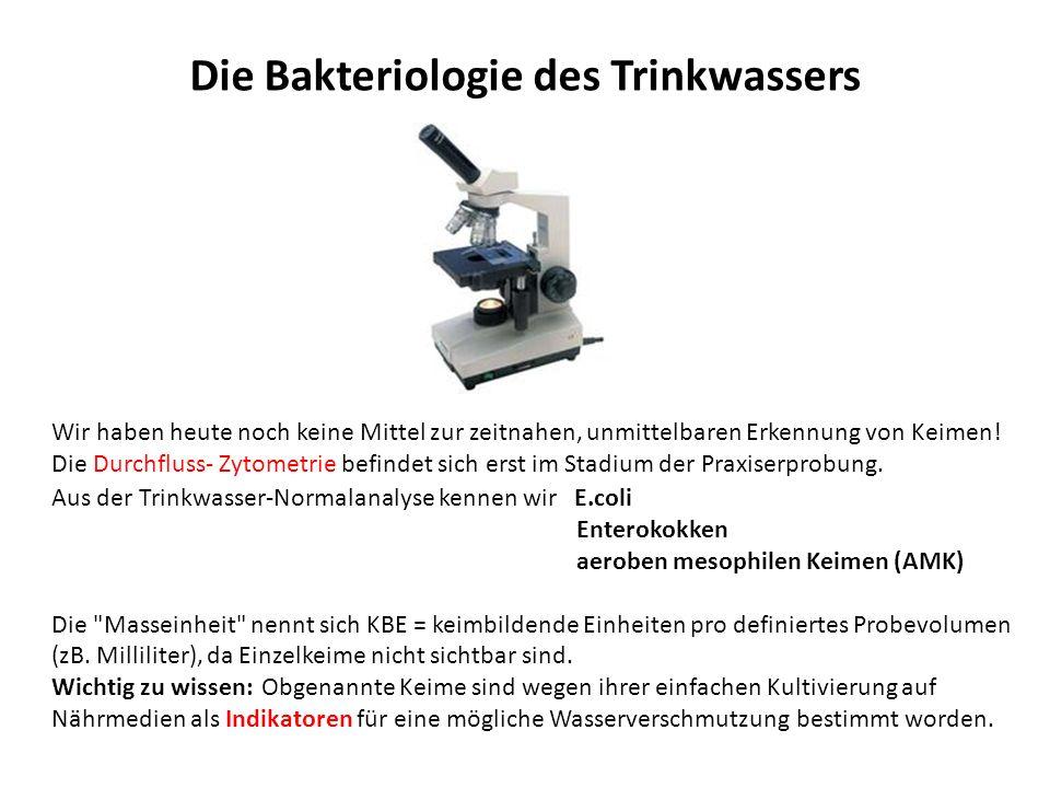 Die Bakteriologie des Trinkwassers