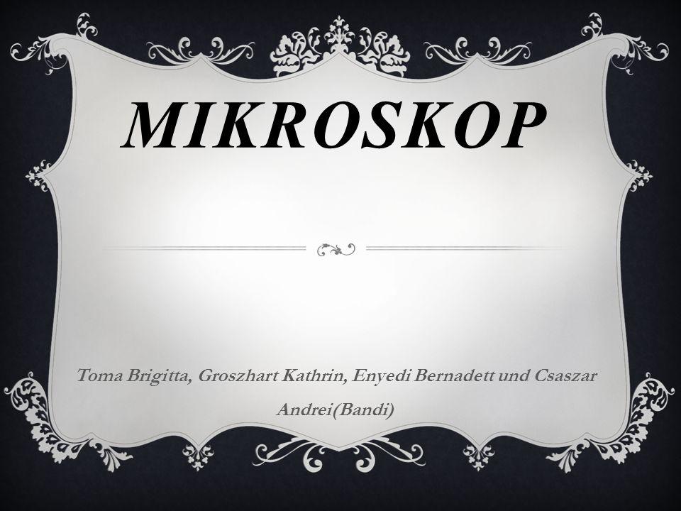 Mikroskop Toma Brigitta, Groszhart Kathrin, Enyedi Bernadett und Csaszar Andrei(Bandi)