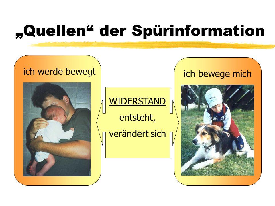 """""""Quellen der Spürinformation"""